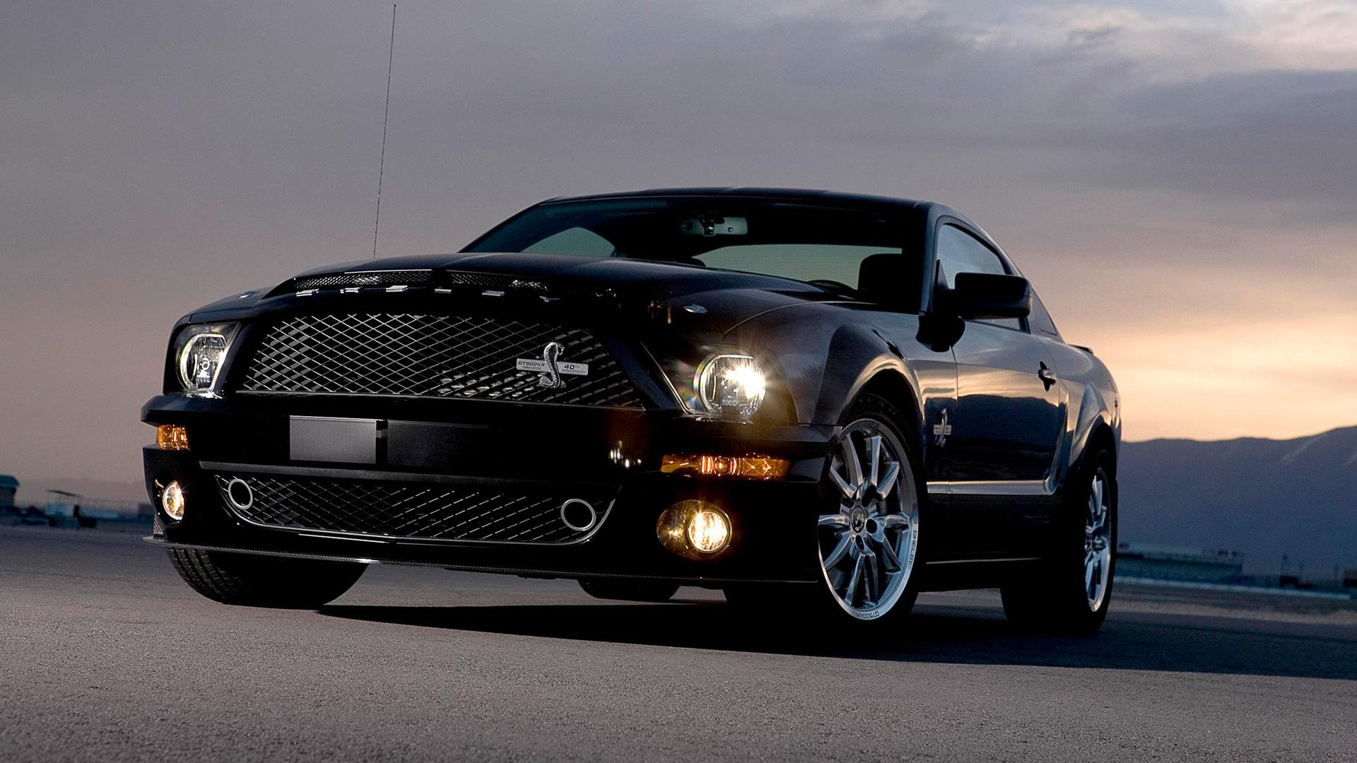 Shelby GT 500 Wallpapers  WallpaperSafari