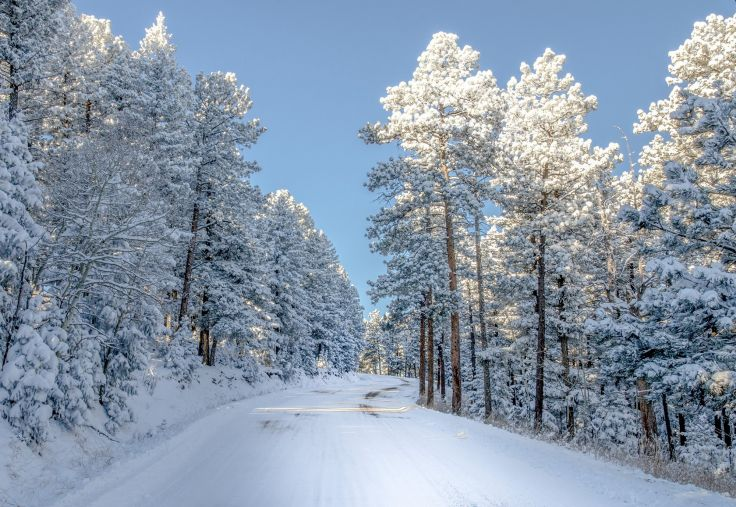 Snow colorado trees winter nature wallpaper 2000x1379 336118 736x507