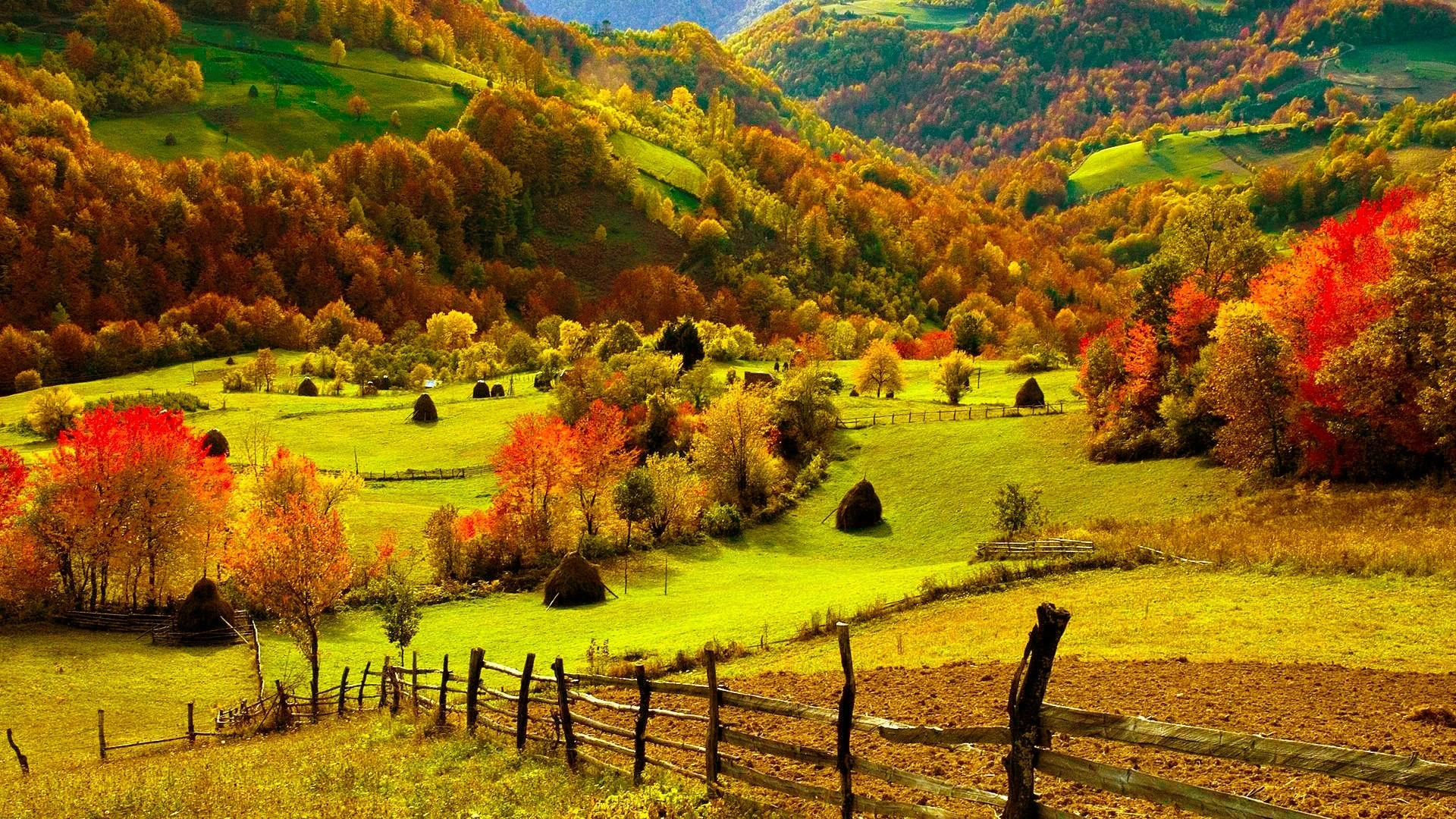 nature landscapes fields hills fence grass farm trees forests autumn 1920x1080