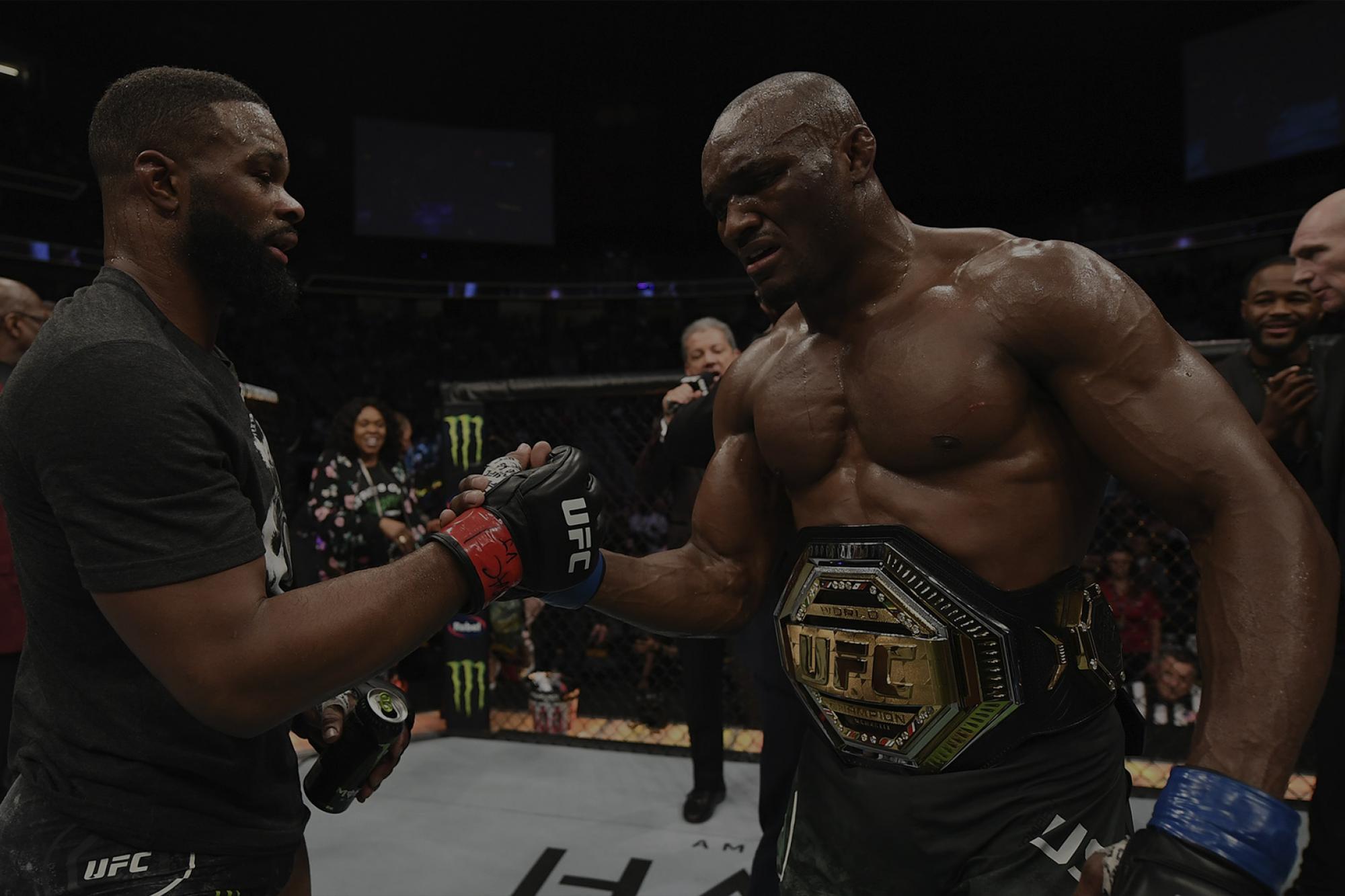 UFC 235 Talking Points UFC 2000x1333