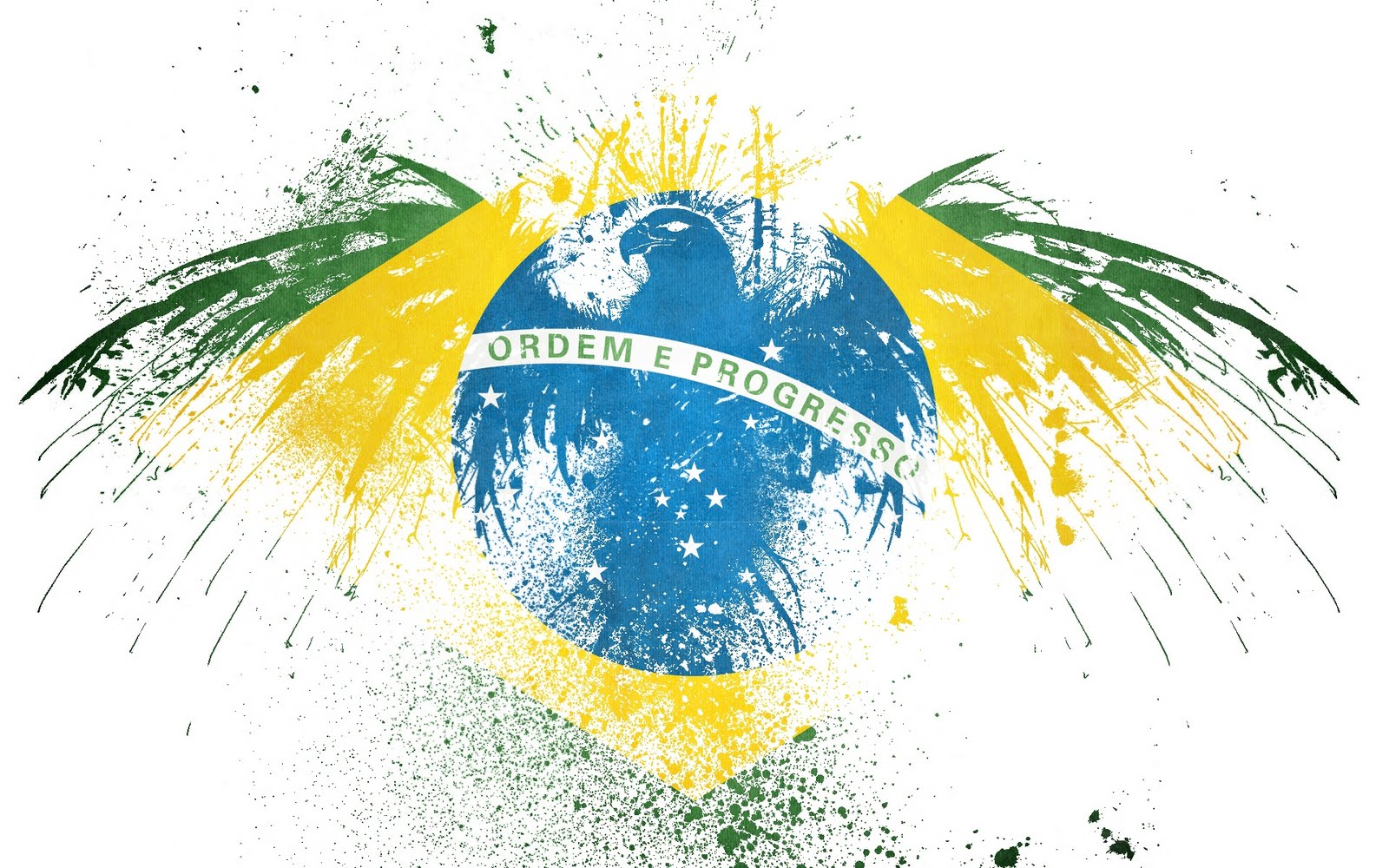 Brazil Wallpaper Flag Background HD 1600x1000