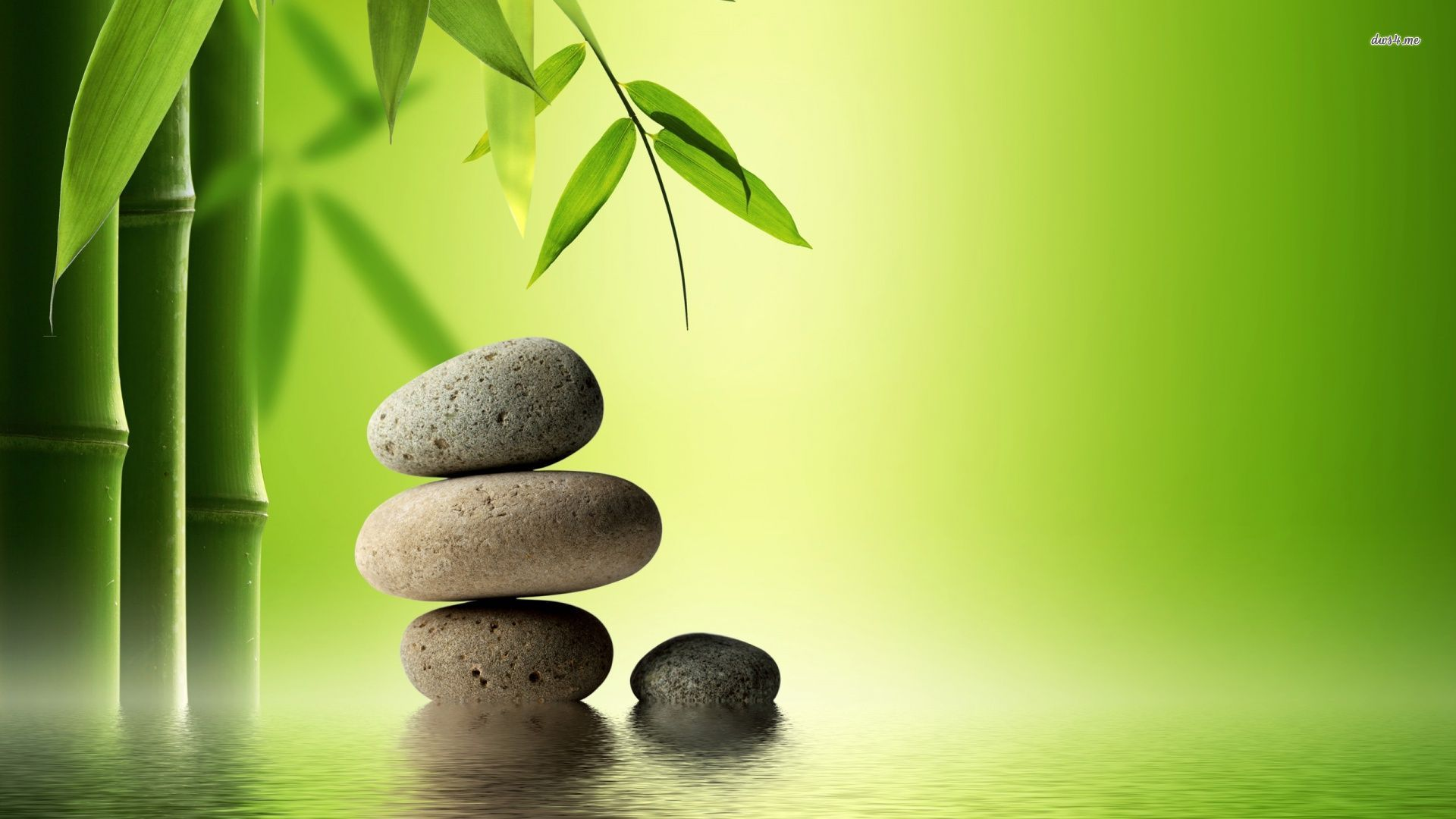 Bamboo and zen stones wallpaper Wallpaper Wide HD 1920x1080