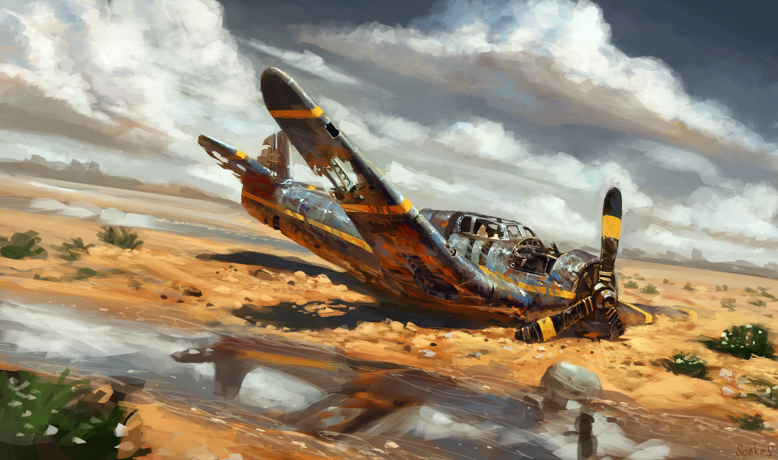 deserts plane crash by real sonkes wallpapers photos pictures 2528x1496