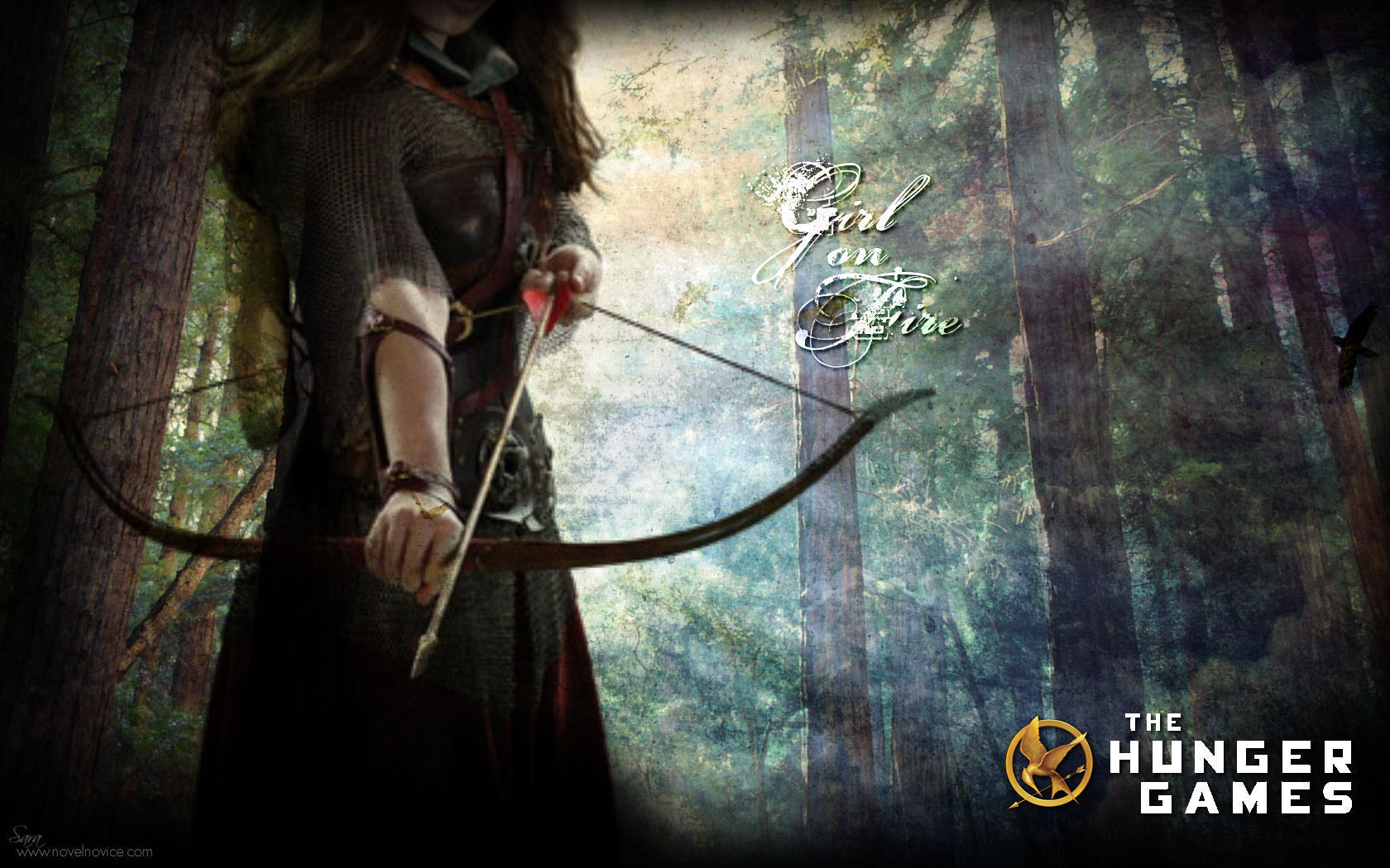 The Hunger Games images quotThe Hunger Gamesquot Wallpapers HD 1680x1050