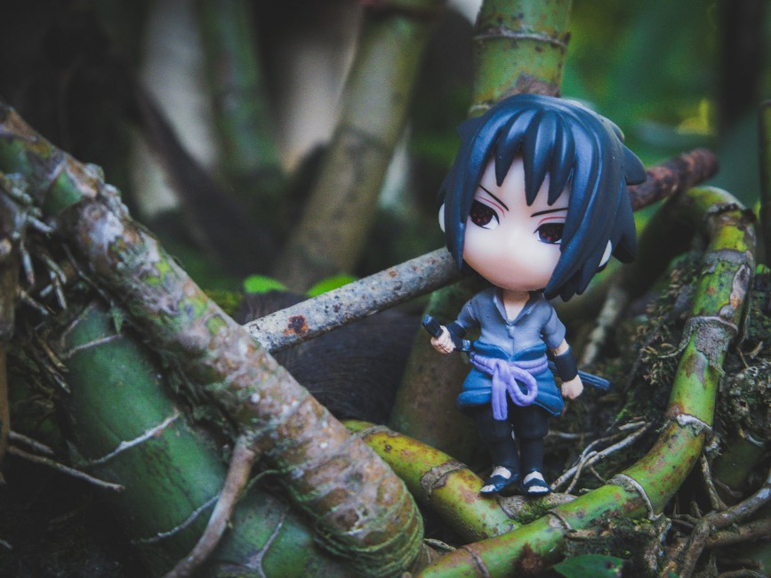 Toy Anime Jungle   Stock Photo Image Wallpaper HD Picture 867x650