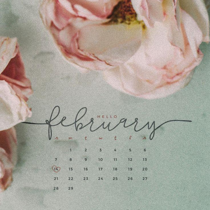 February Calendar 2017 Wallpapers 736x736