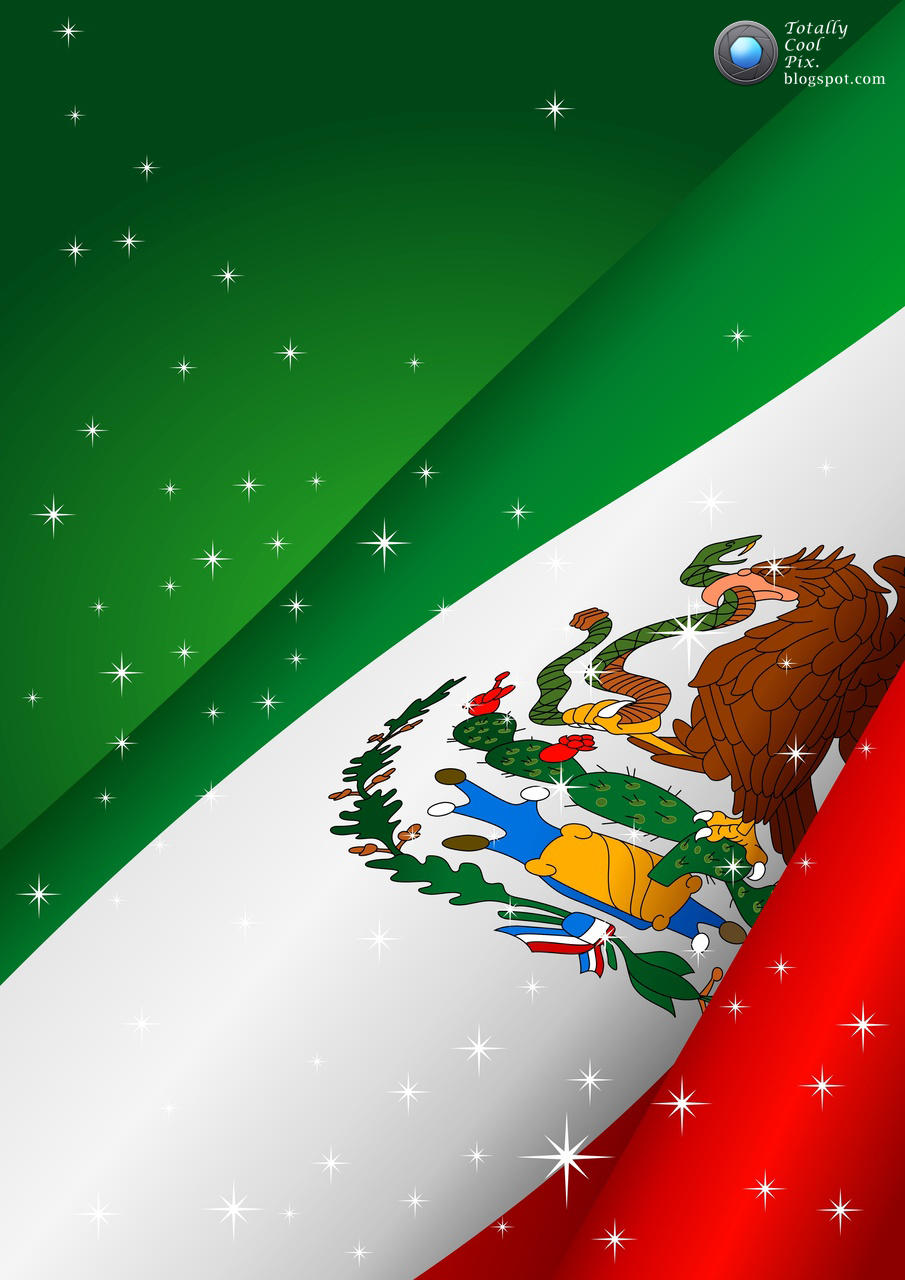 Mexican Flag   Flag Pictures 905x1280
