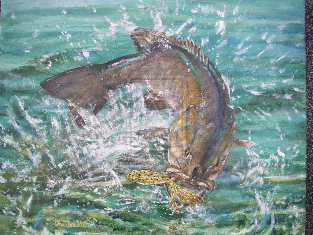 Smallmouth Bass Wallpaper Smallmouth bas 1024x768