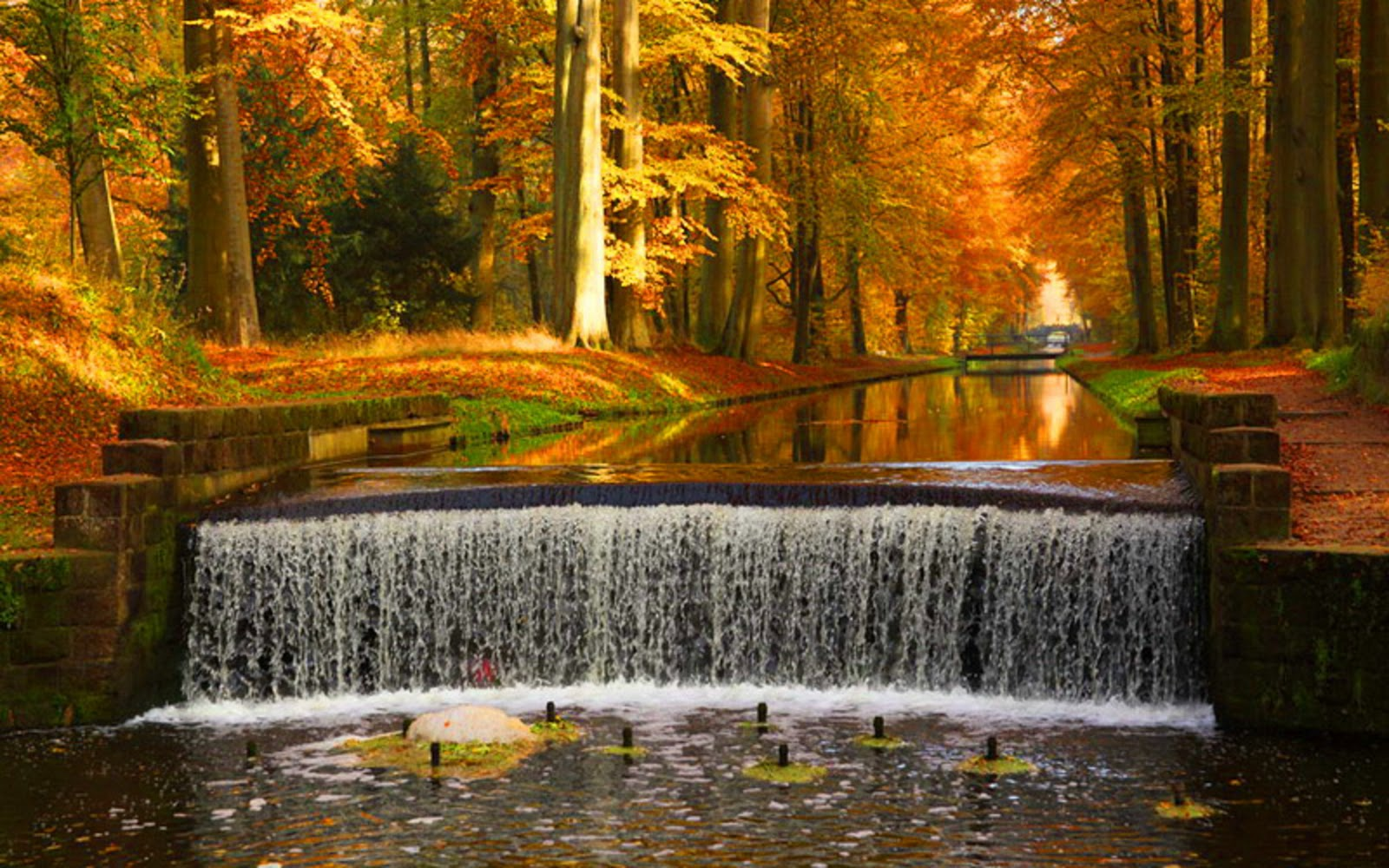 Autumn Waterfalls Hd Desktop Wallpaper 1600x1000