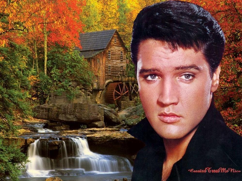 50 Elvis Wallpaper For Walls On Wallpapersafari