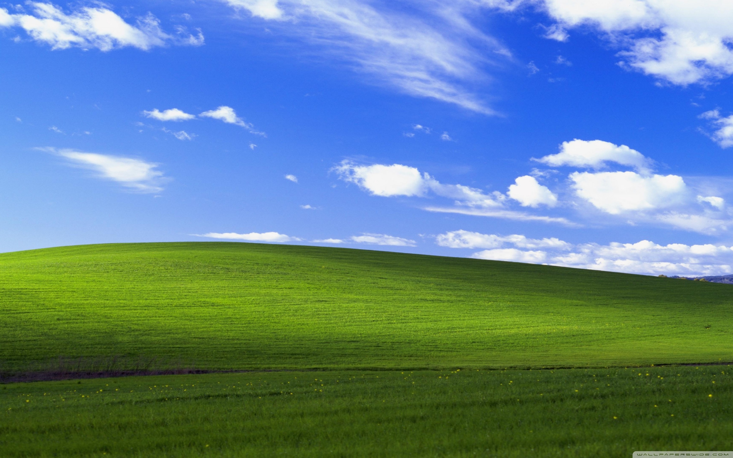 Windows XP Ultra HD Desktop Background Wallpaper for 4K UHD TV 2880x1800