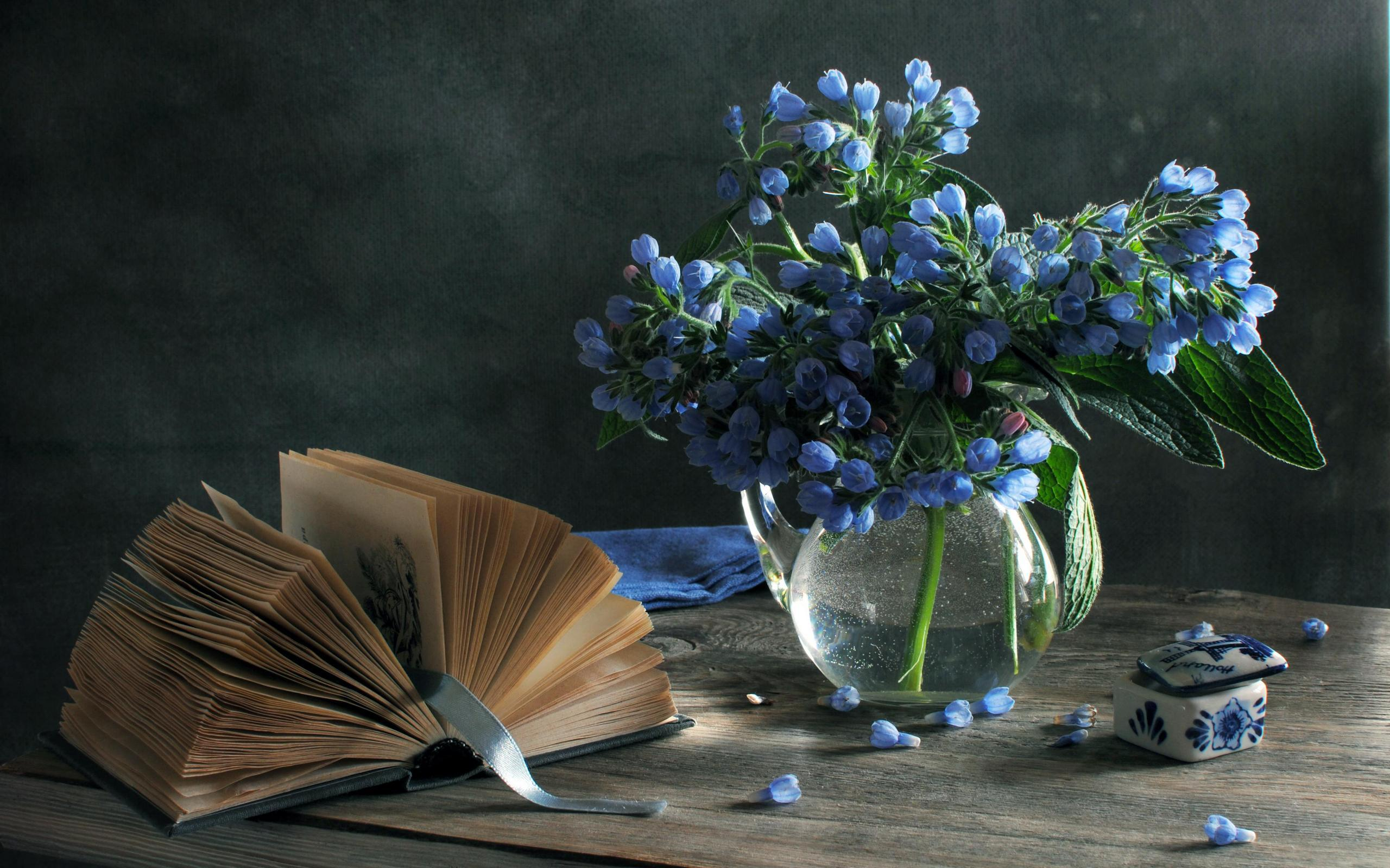 Wallpaper still life vase flowers blue spring book box 2560x1600