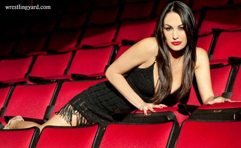 WWE WRESTLING RAW SMACKDOWN THE DIVAS Brie Bella   Wallpaper 977x602