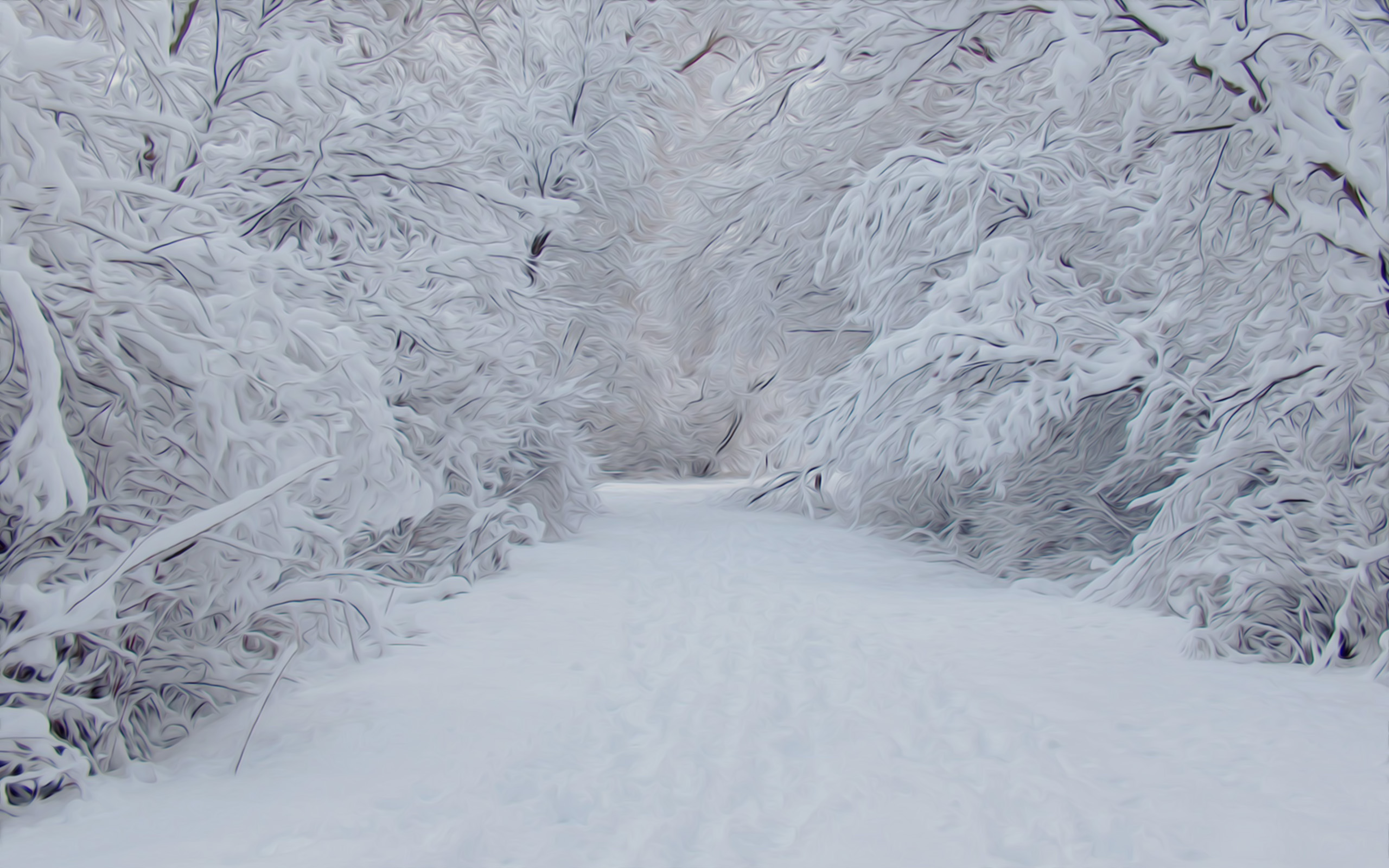 Winter images snowy snow HD wallpaper and background photos 34209346 2560x1600