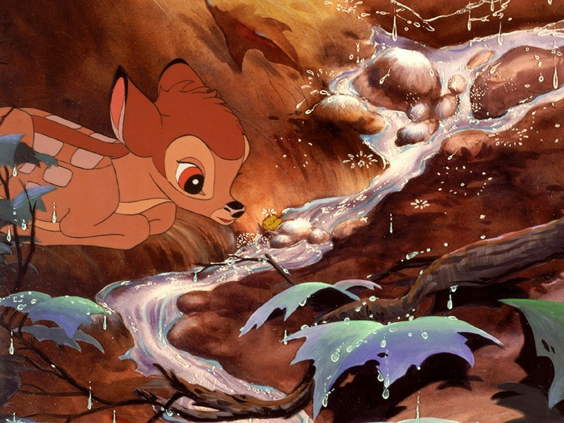 Unidos anunciou nesta quarta feira 28 que preservar Bambi 800x600