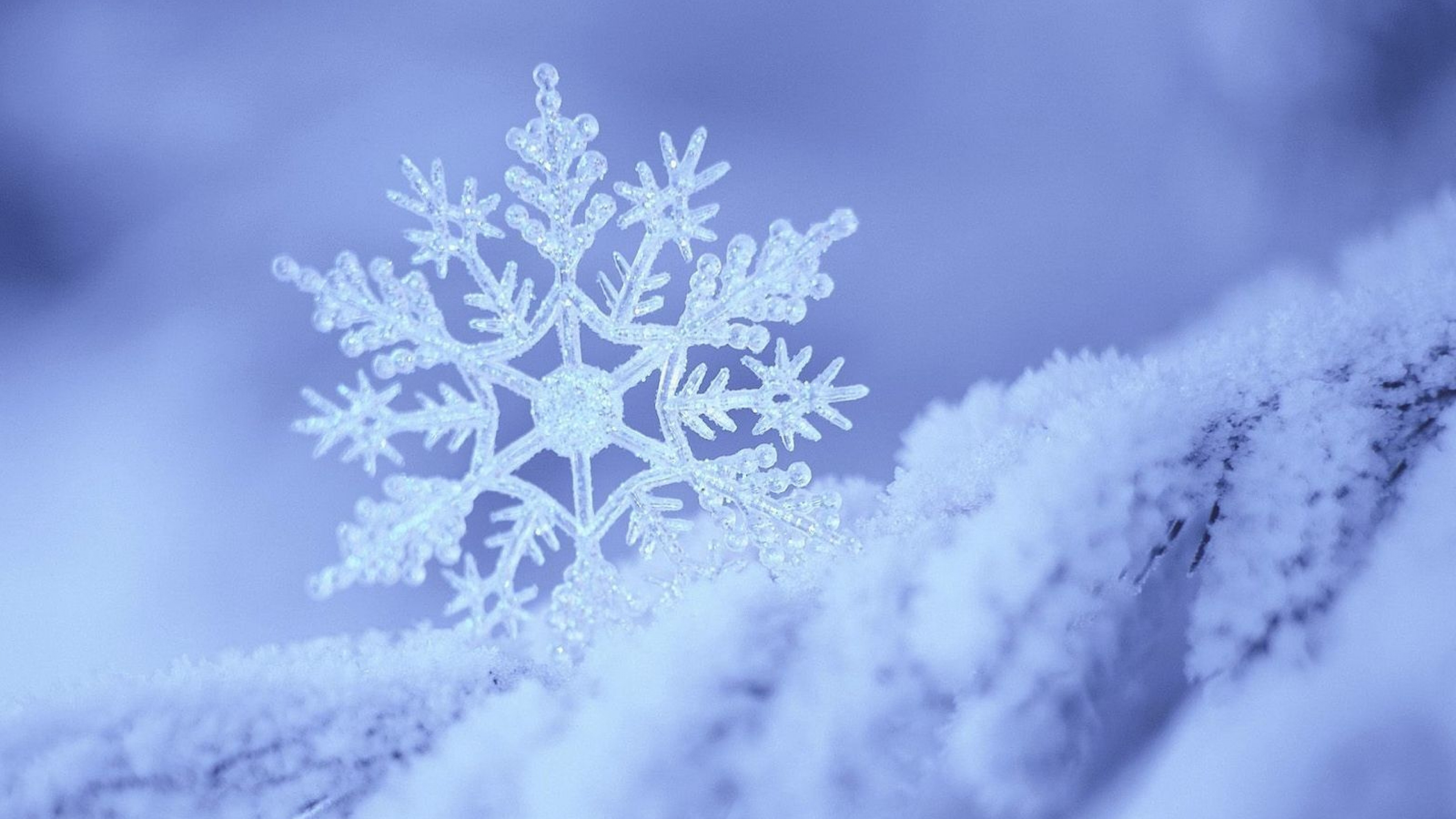 Download Wallpaper 3840x2160 snow snowflake winter form pattern 4K 3840x2160