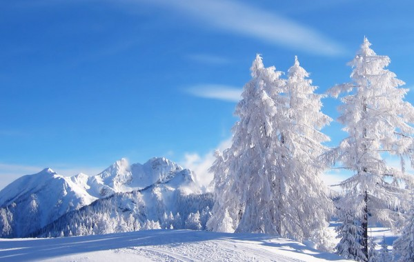 Winter Wallpaper Hd wallpapers   4K Ultra HD Wallpapers download now 600x380