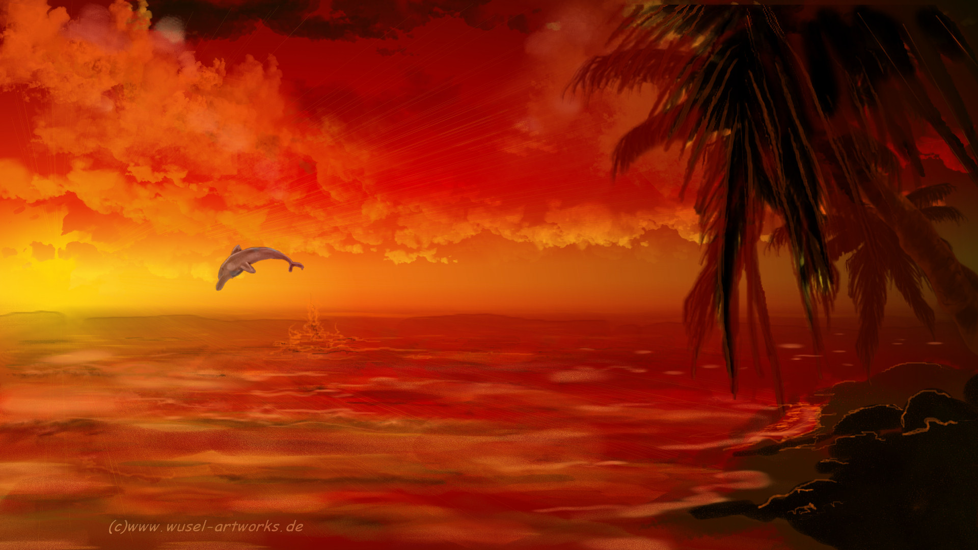 Dolphins Dolphin Hd Widescreen Beach 389388 With Resolutions 1920 1920x1080