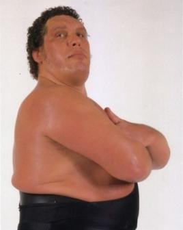 Andre The Giant Archives   Page 5 of 14   WWE Superstars 268x336