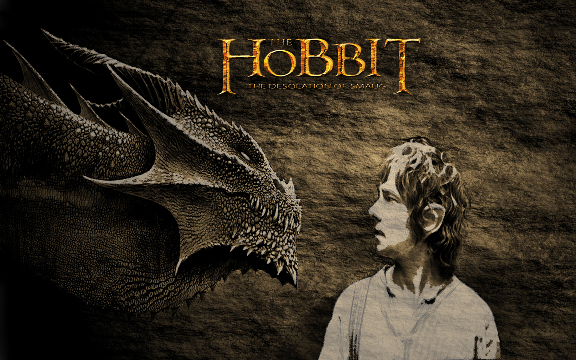 Smaug hd phone wallpaper   Hobbit desolation of smaug wallpaper 1920x1200