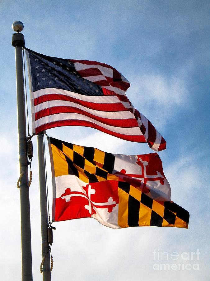 maryland flag desktop wallpaper