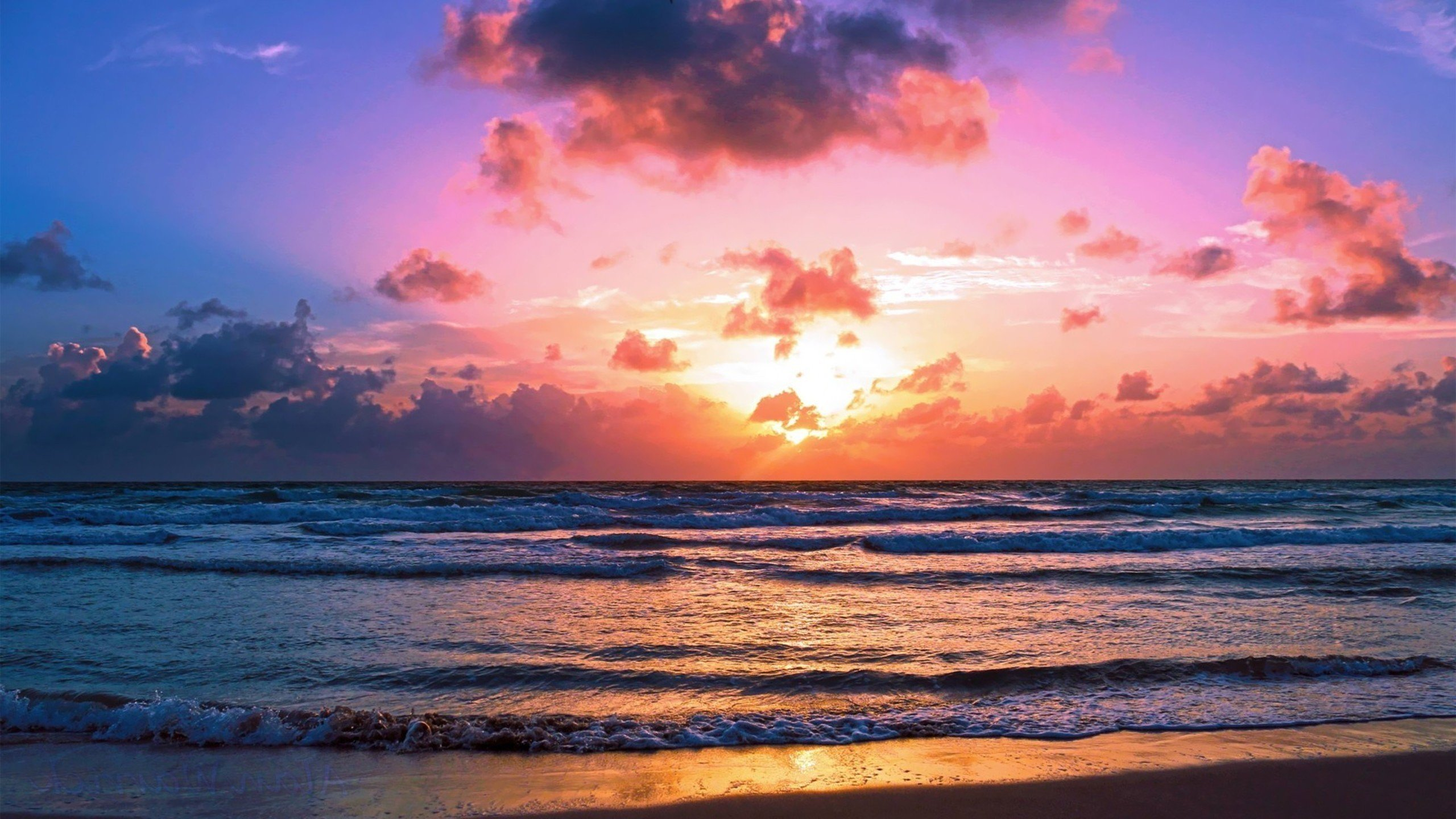 Miami Beach Sunset Wallpaper 7305 Wallpaper 2560x1440