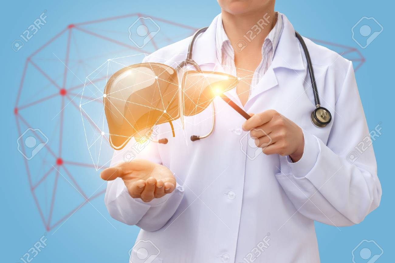 Doctor Shows Liver On A Blue Background Stock Photo Picture And 1300x866