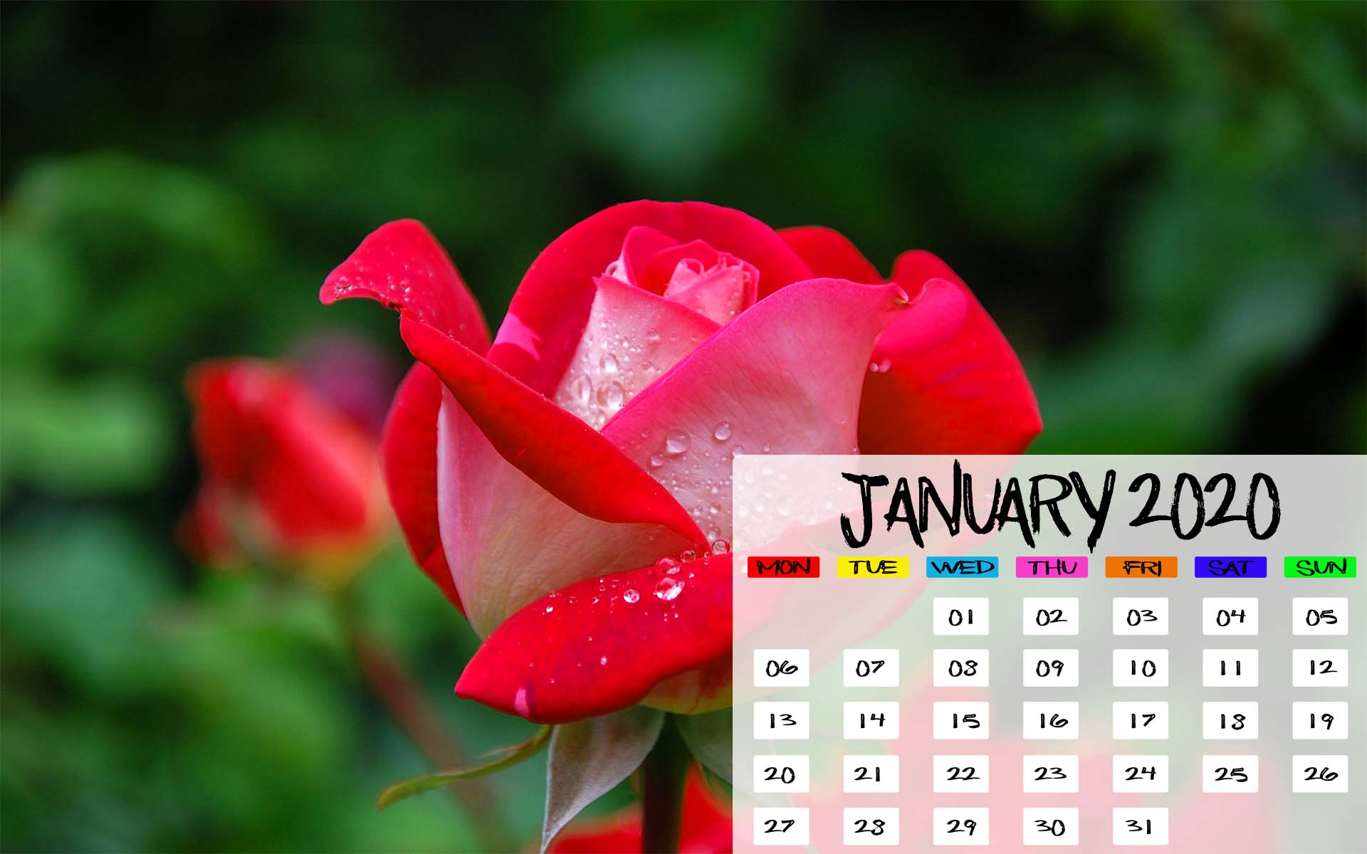 January 2020 Calendar iPhone Desktop Mobile Tablet Wallpapers 1920x1200