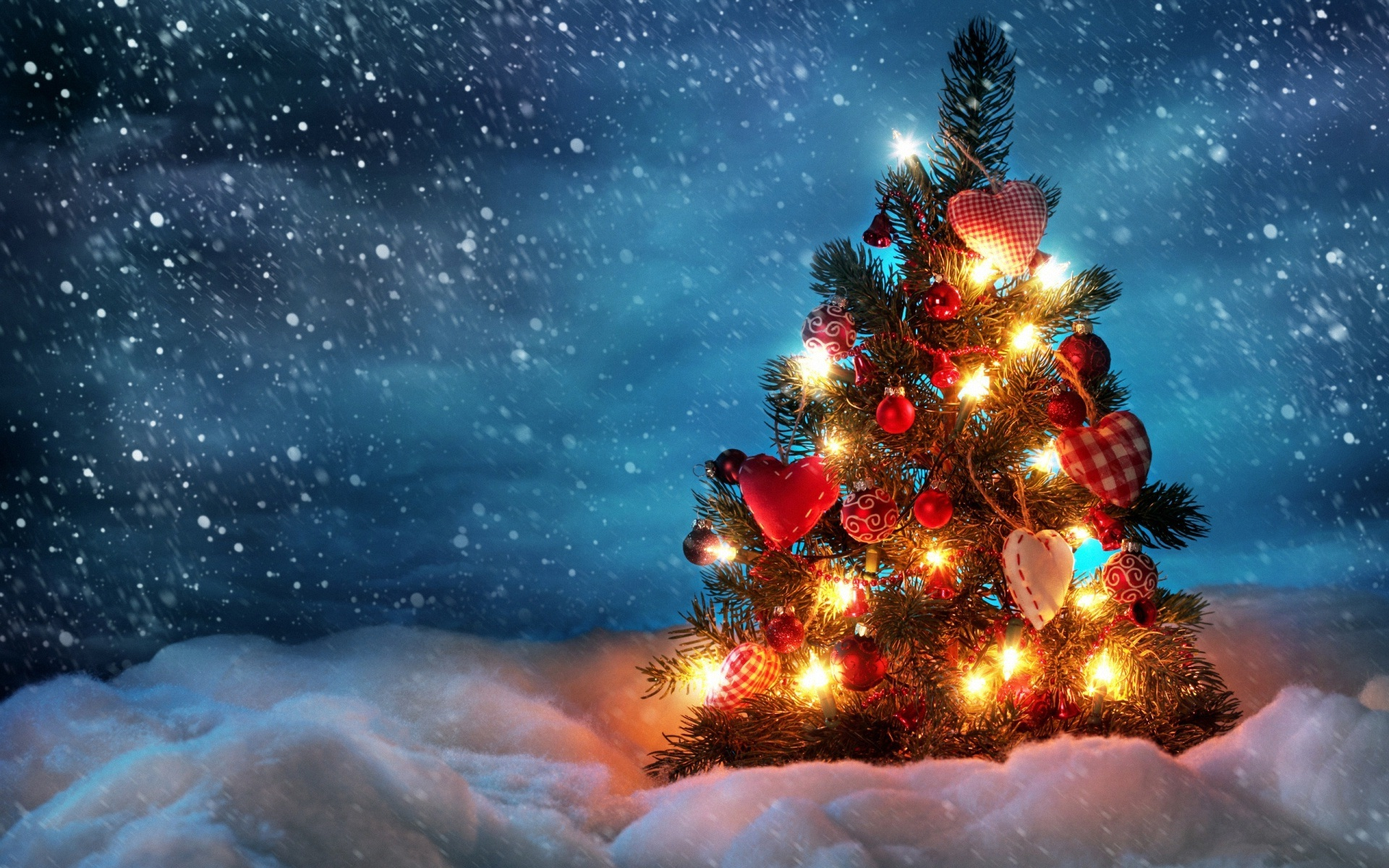 2014 Beautiful Christmas Tree   Wallpaper High Definition High 1920x1200