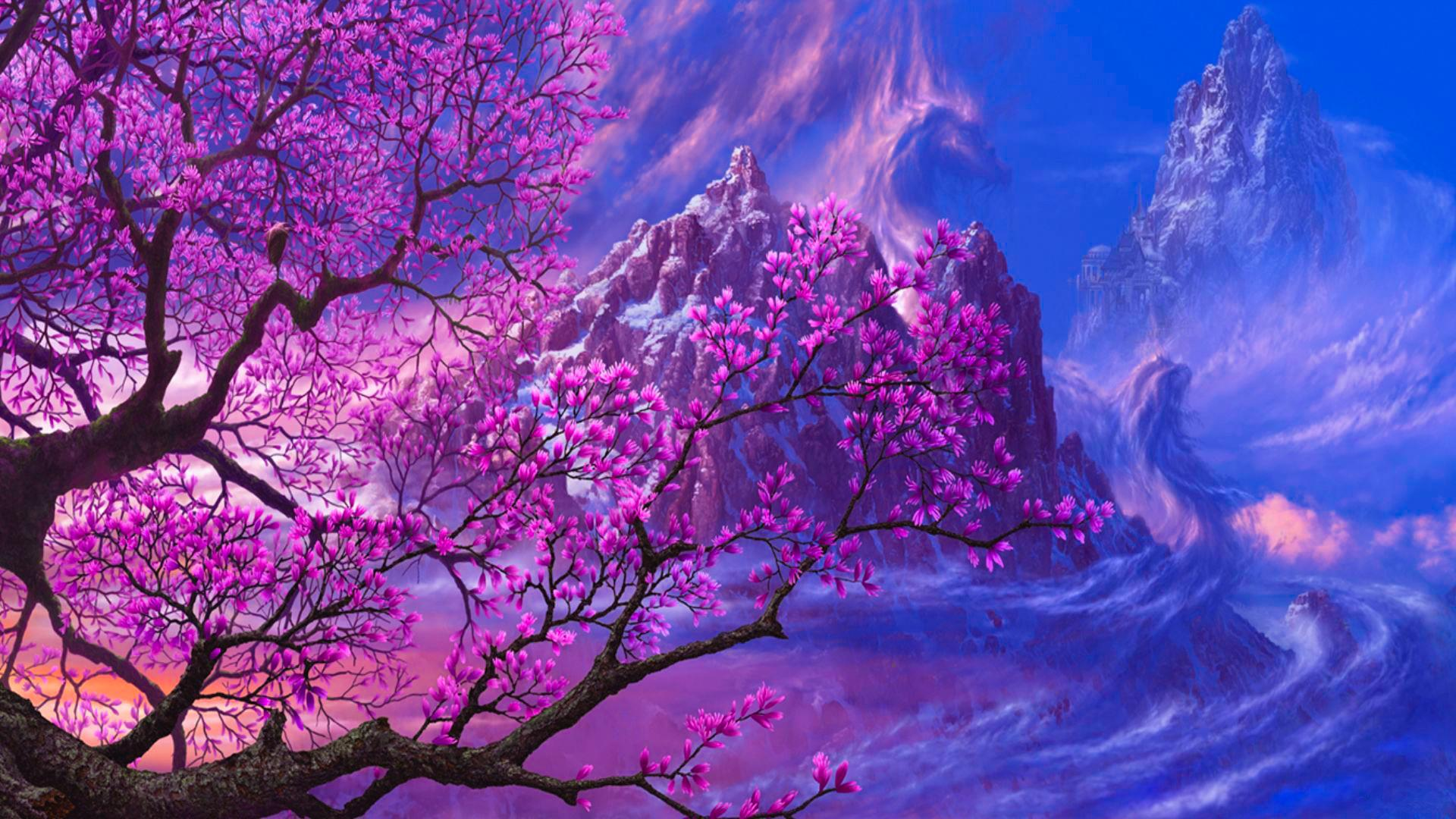 cherry blossom pictures - HD1366×768