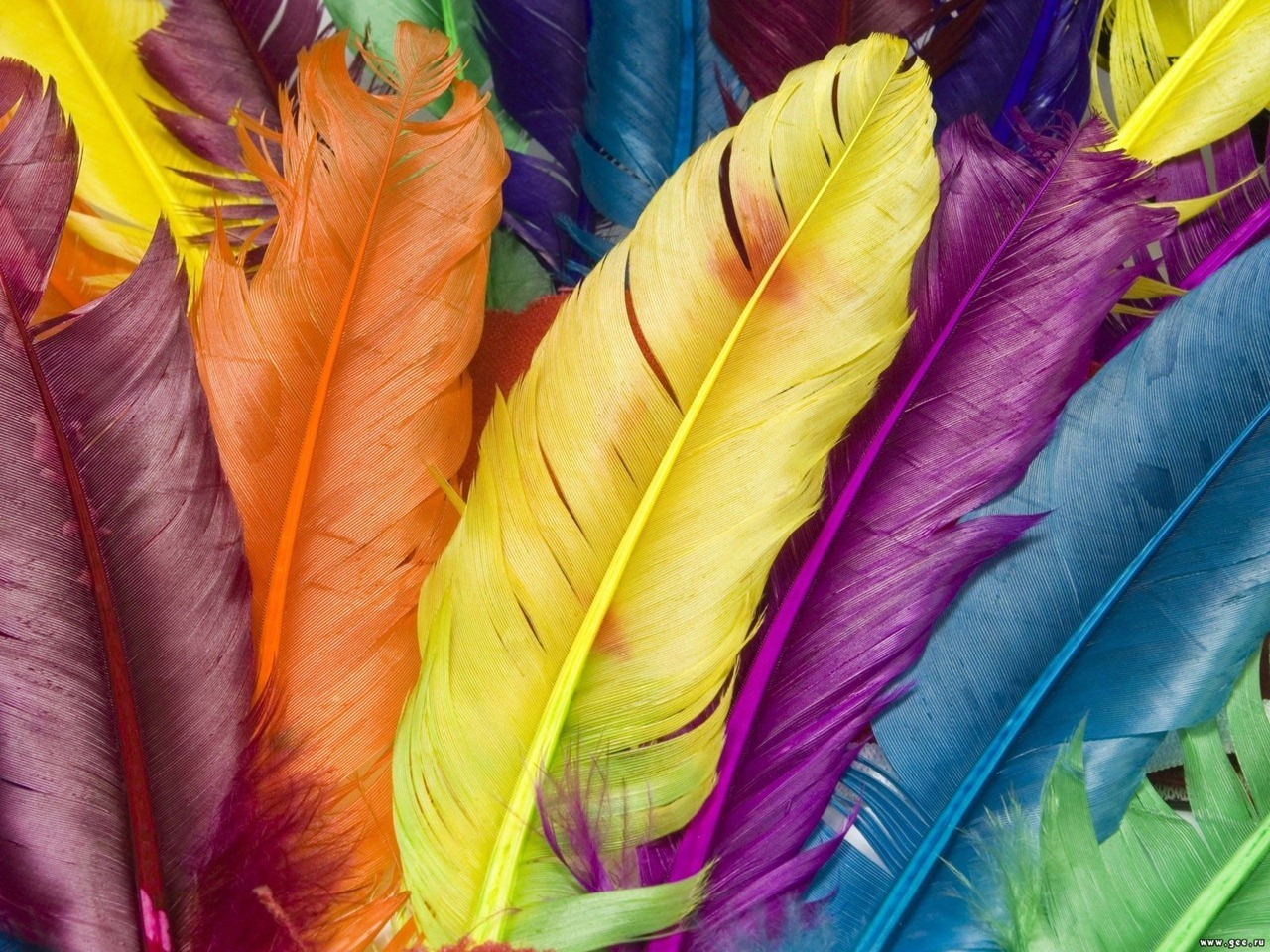 Colorful Desktop Wallpaper wallpaper Colorful Desktop Wallpaper hd 1280x960