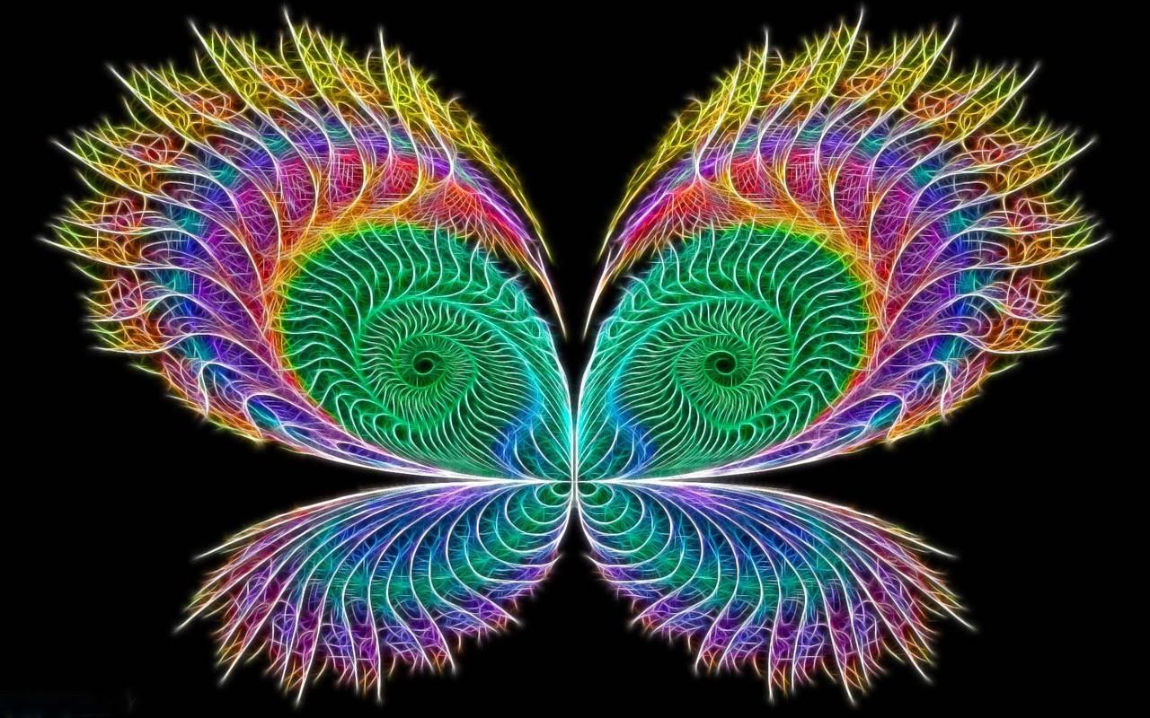 neon butterfly wallpaper butterfly neon 1280x800