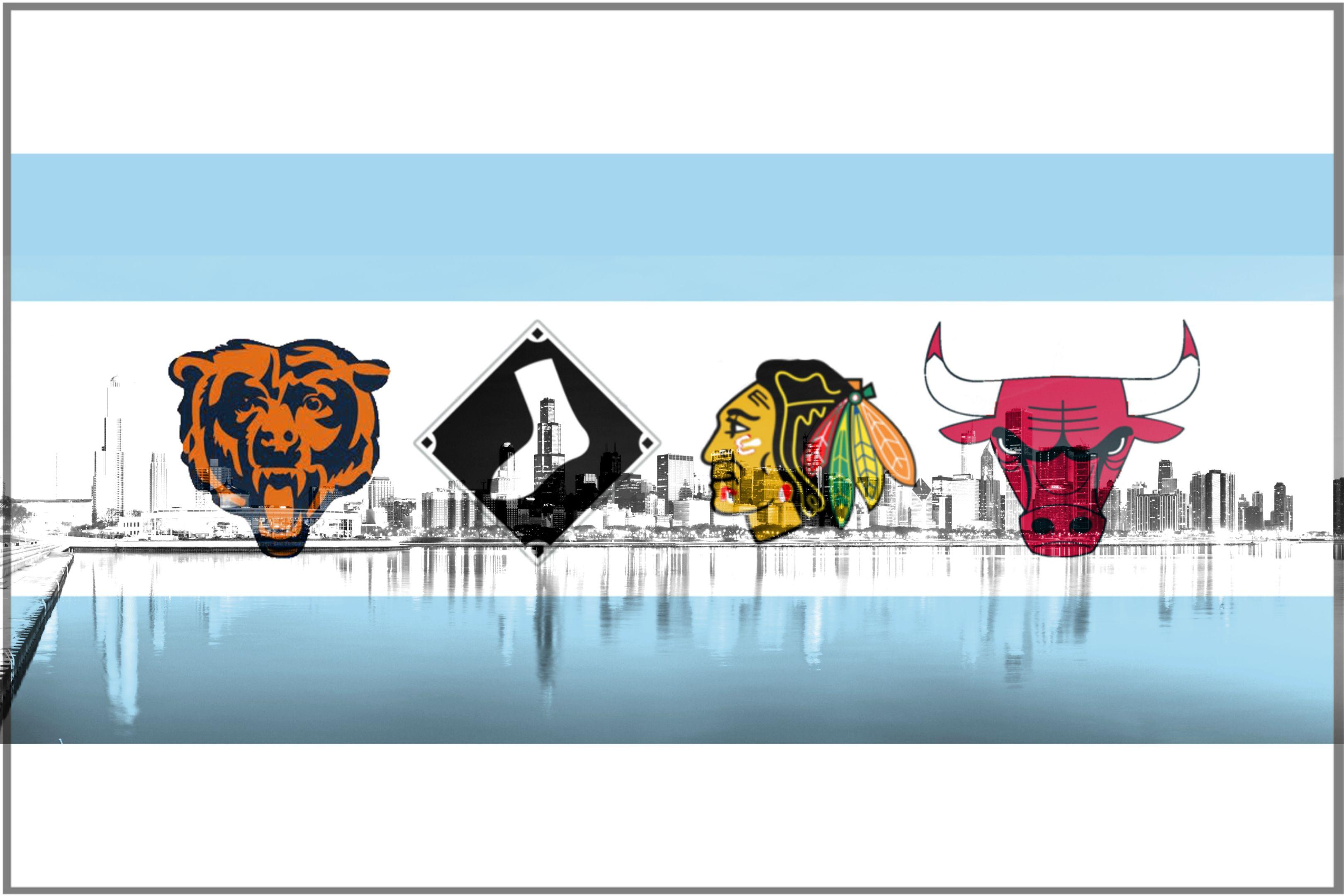 Chicago New Car City Sticker