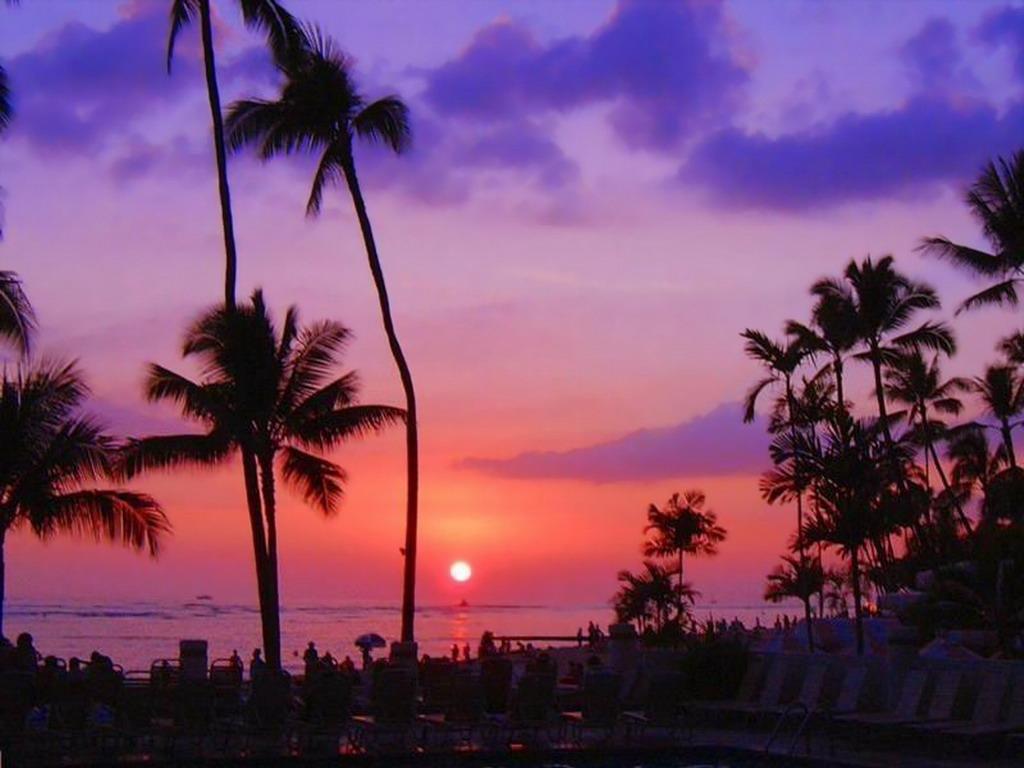 Hawaii Sunset Beach Wallpaper 1024x768