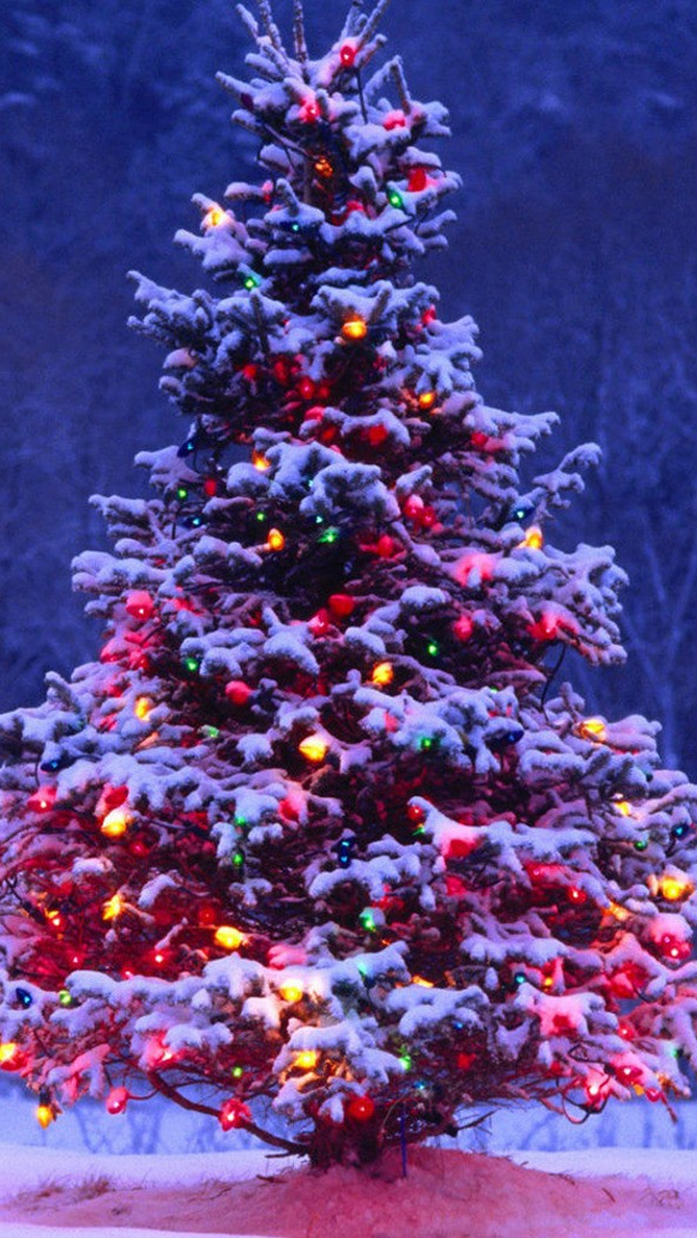Beautiful Christmas iPhone Wallpapers Free To Download