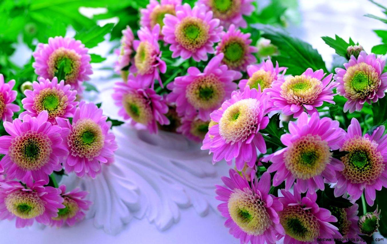 Стихи и поздравления к подарку букет хризантем
