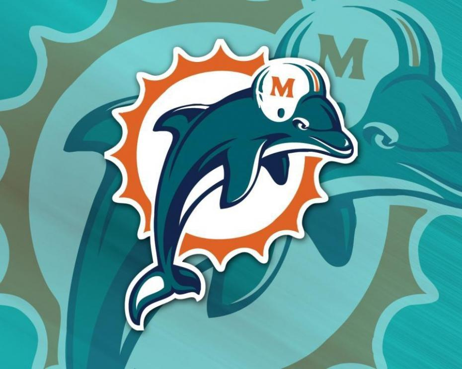 amricains parodient les cheerleaders des Miami Dolphins meltyBuzz 930x744