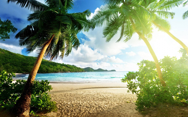 Exotic Islands Nature Wallpaper Download Of Island Wallpaper 1440x900