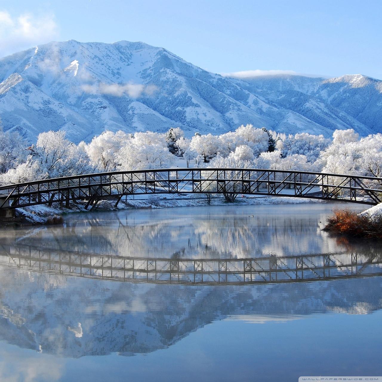 Beautiful Winter Scene 4K HD Desktop Wallpaper for 4K Ultra HD 1280x1280