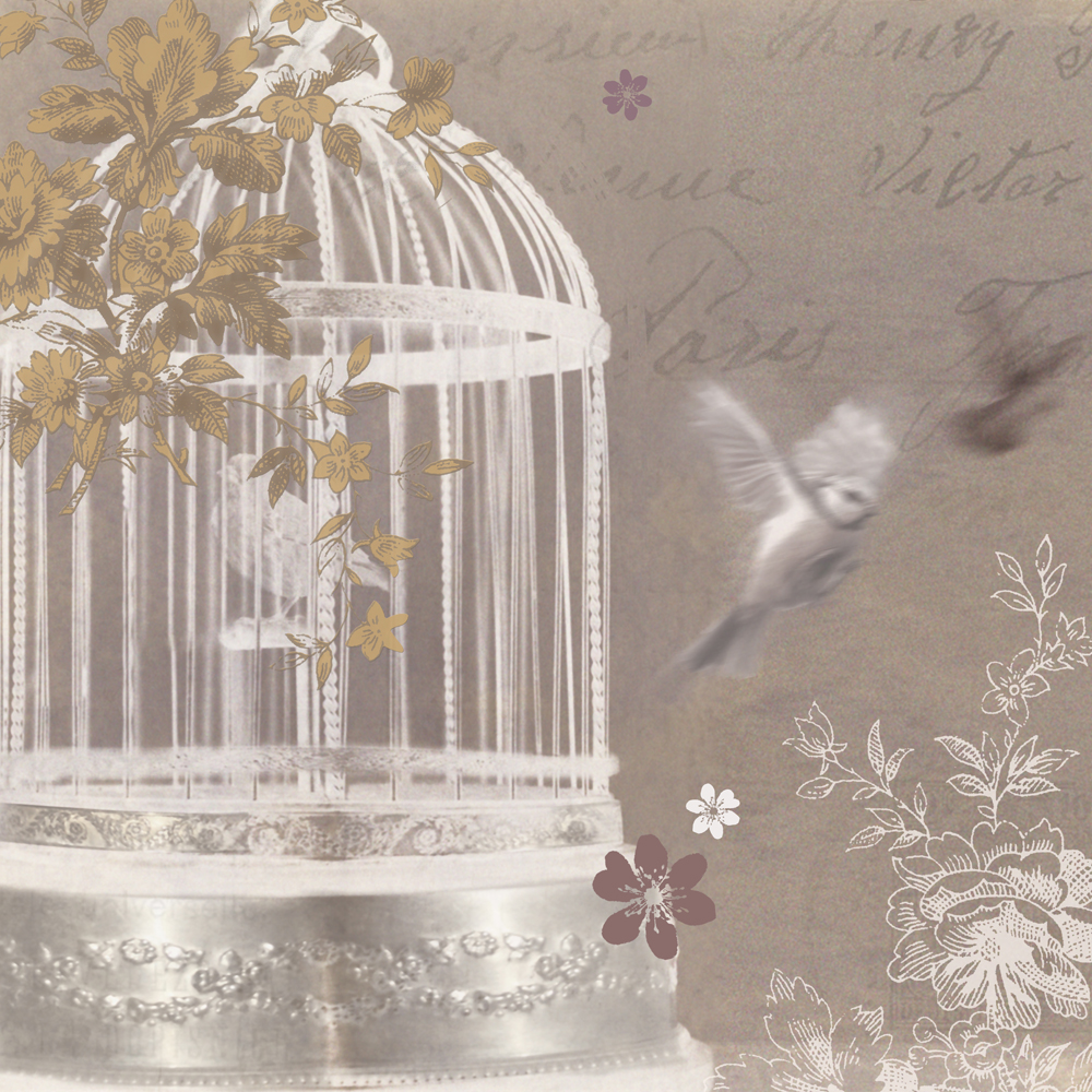 Silver Birdcage canvas by Arthouse Wallpaper Direct 1000x1000