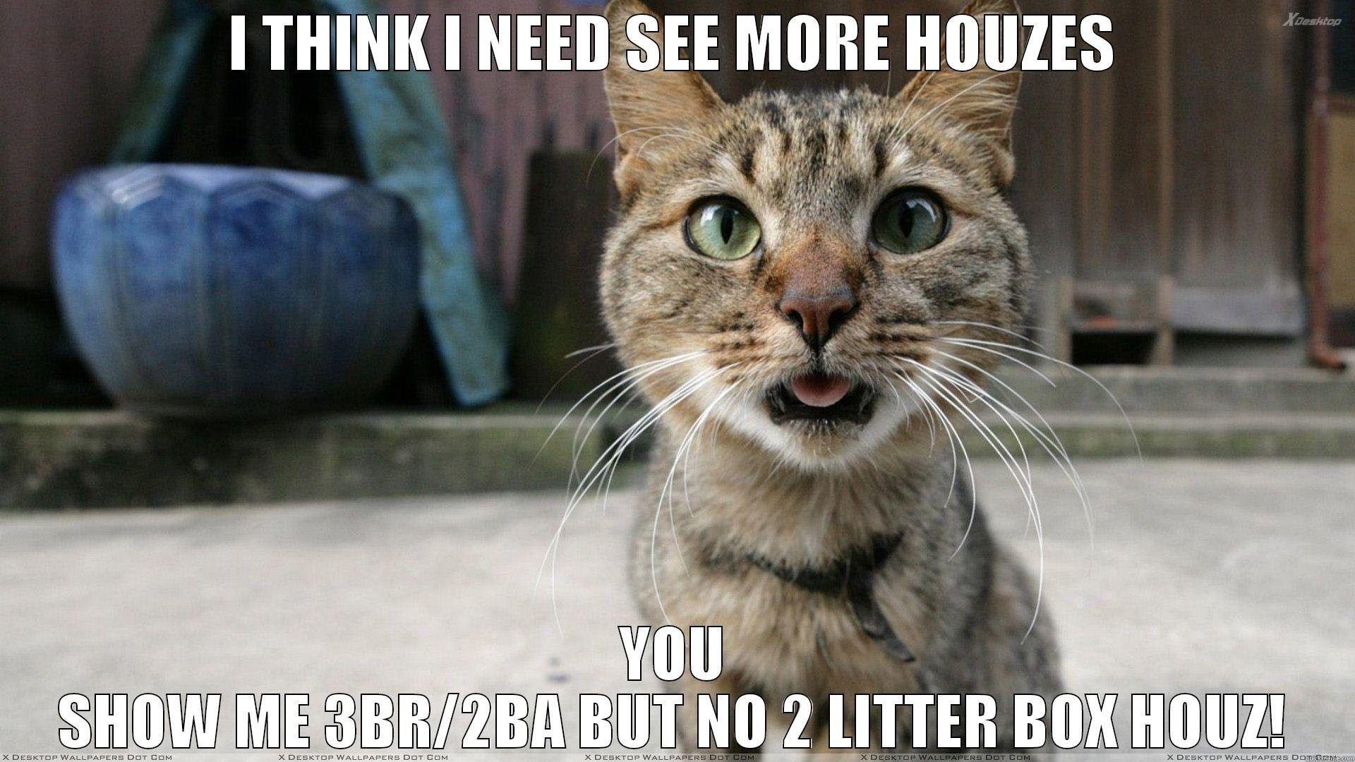 Cat Meme Wallpapers   Top Cat Meme Backgrounds   WallpaperAccess 1920x1080