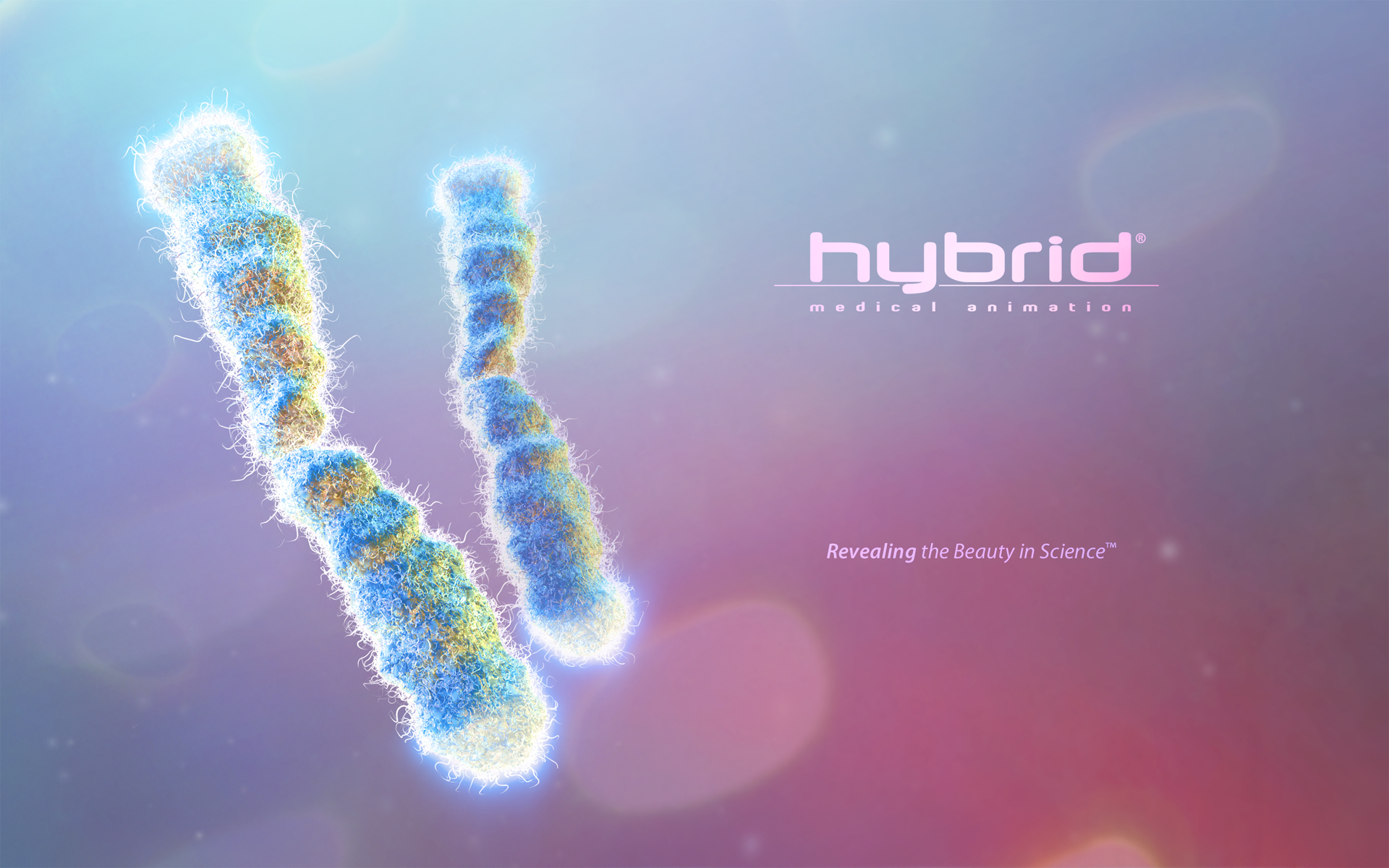 Hybrid Medical Animation   Hybrid Desktop Wallpapers 1920x1200