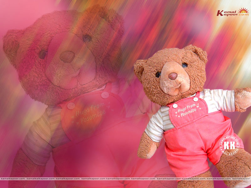 Teddy Bear Download Desktop Cute Wallpapers 800x600