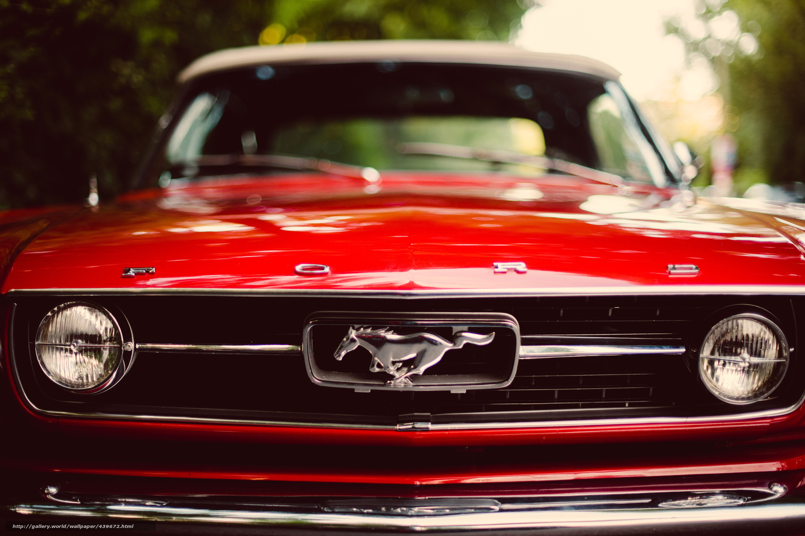439672 ford mustang red classic ford mustang krasnyj avto 4163x2770 1600x1065