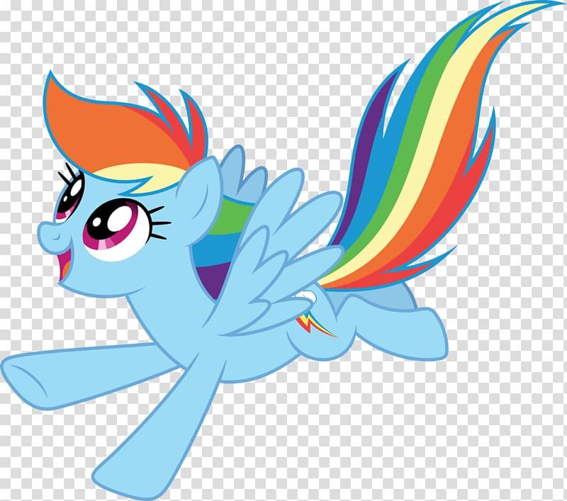 My Little Pony Friendship Is Magic fandom Rainbow Dash rainbow 800x707