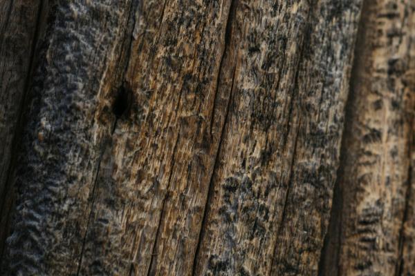 Barn Wood 600x400