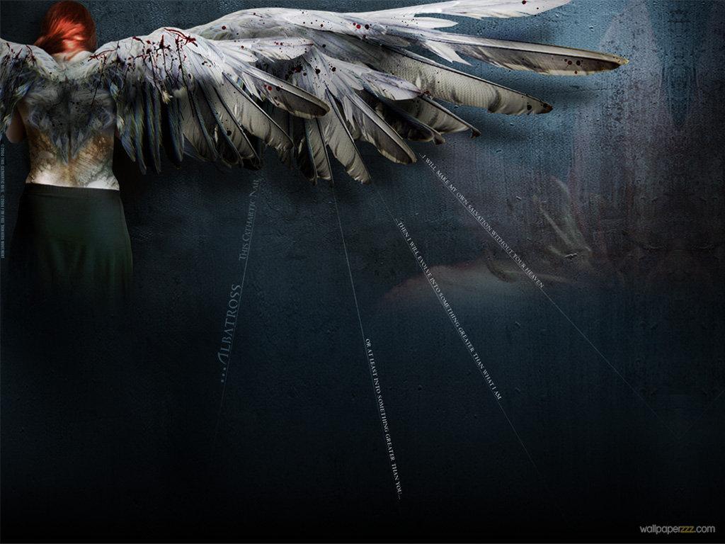 Download Bloody Angel Wings Wallpaper Wallpaper 1024x768