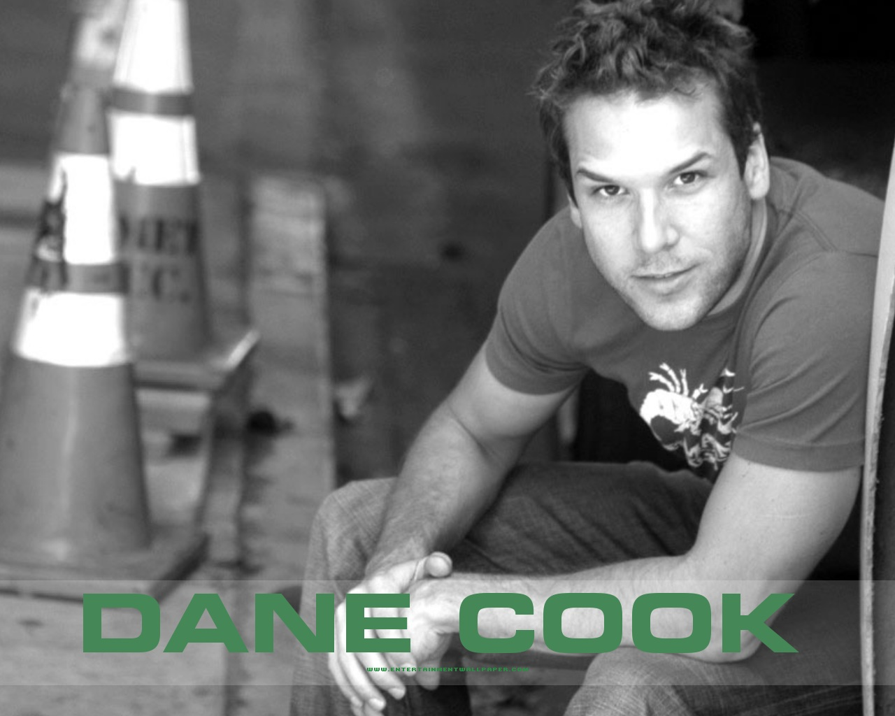 News Room Actress Dane Cook   Actress Wallpapers 1280x1024
