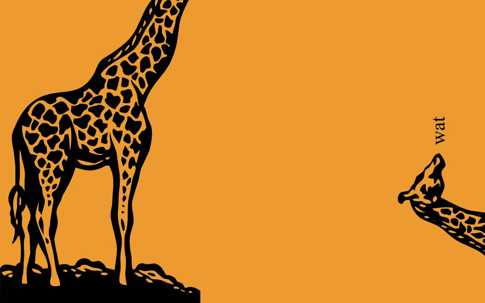 1920x1080 funny giraffe desktop - photo #7