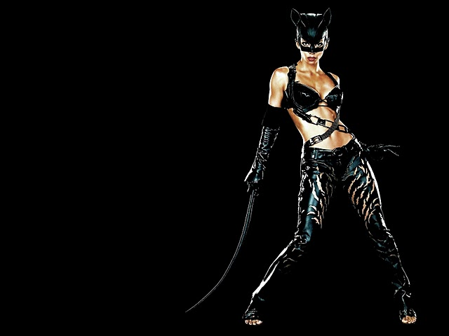 Wallpapers Collection halle berry catwoman wallpaper 640x480